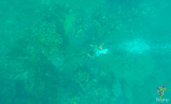Buceo en Taganga costa colombiana