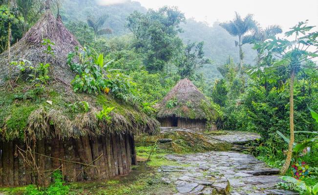 Cabañas y vestigios en la ciudad perdida Tayrona