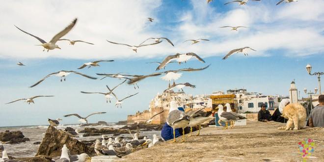 Fotografía de viajes, Essaouira Marruecos