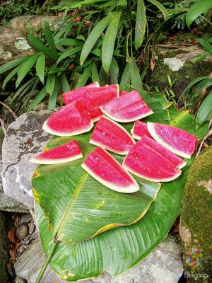 Frutas exóticas: sandía fotografía