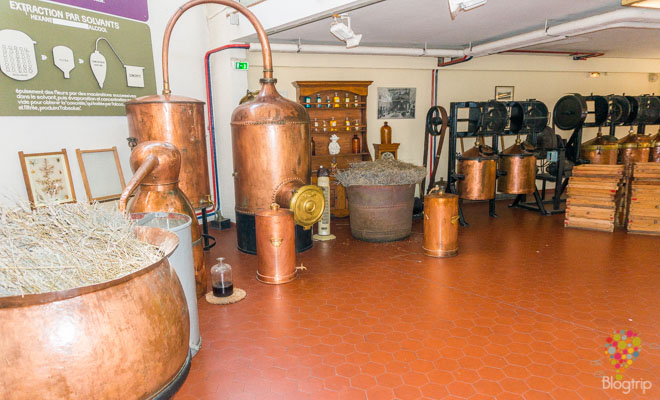 Alambiques del museo Galimard, viaje a Grasse