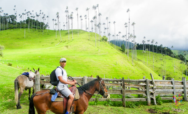 Photo of Valle del Cocora en Salento, Colombia al natural