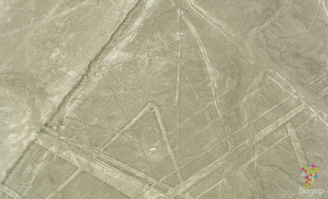 Figura geoglifo la araña, líneas de Nazca Perú