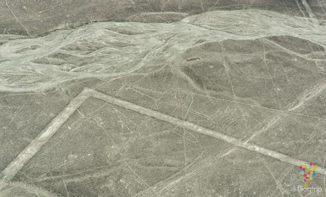 "Figura geoglifo ""ballena"" líneas de Nazca Perú"