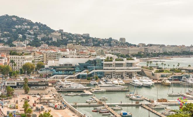 Palacio de festivales Cannes Francia, Cannes is yours