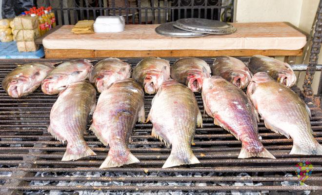 Pescado asado a la brasa, platos típicos de Colombia