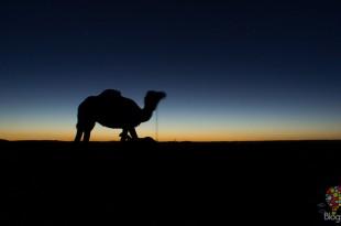 Puesta de sol en el desierto del Sahara en Marruecos