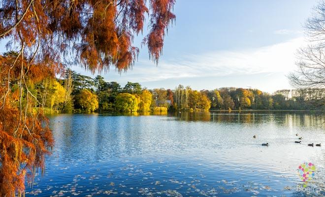 Reflexiones y fotografía del paisaje en otoño
