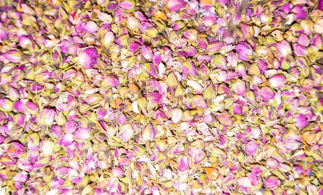 Rosas para perfumes en Grasse sur de Francia