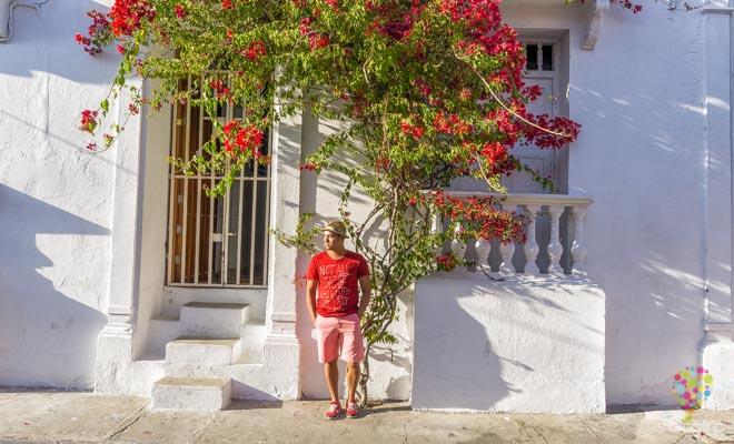 Aristofennes en las calles de Cartagena - Blogtrip blog de viajes