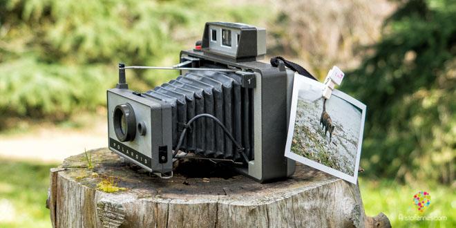 Polaroid para fotografías instantáneas (La Pola)