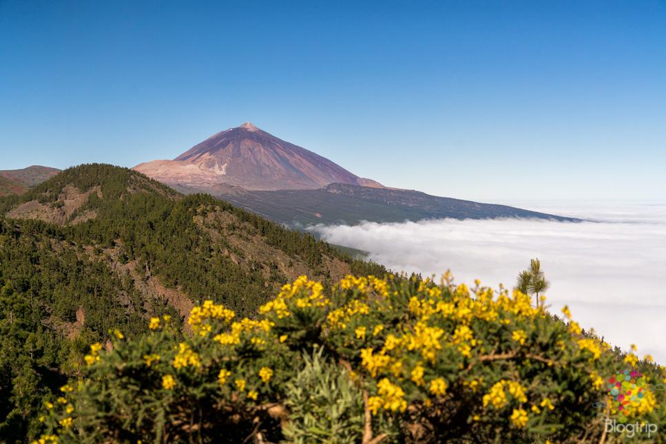 Fotografía del paisaje del volcán y parque nacional Teide en Tenerife