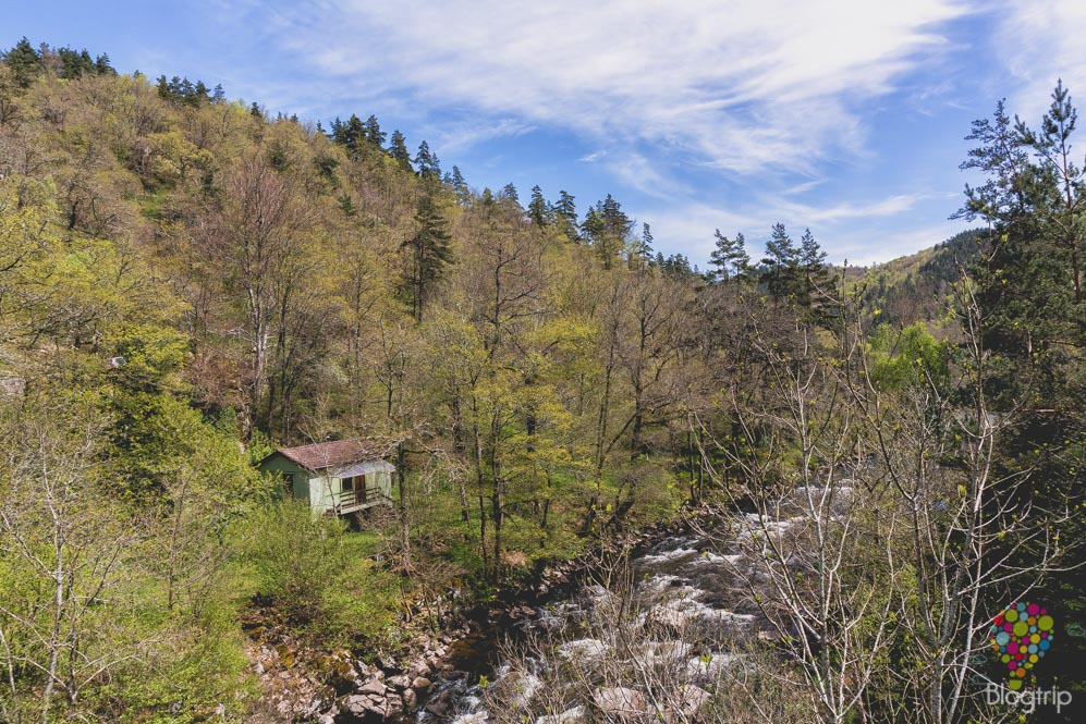 Paisaje en ruta y etapas del camino de Santiago francés