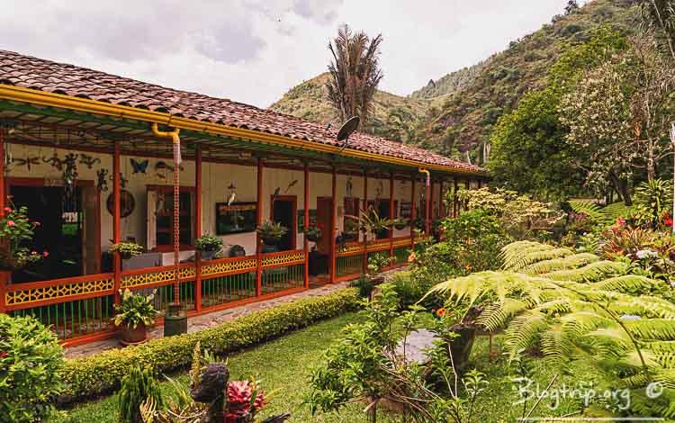 Dormir en una finca cafetera viajando por Colombia
